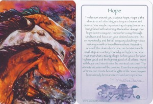 "Front and back of this ""Touched by a Horse""(TM) wisdom card"